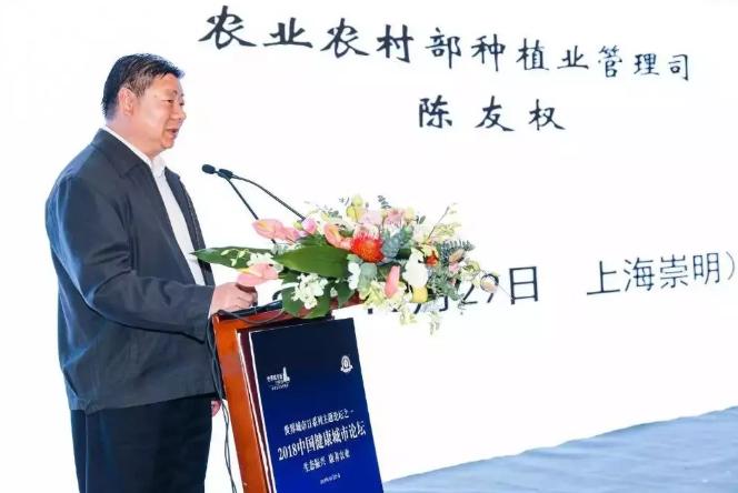 2018中国健康城市论坛在崇明举行