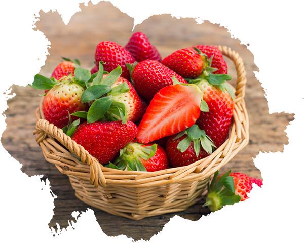 瑞茵开心农场新2019新季草莓上市