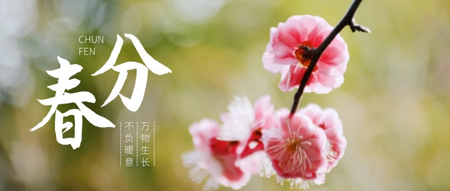 春分丨二十四节气传统文化